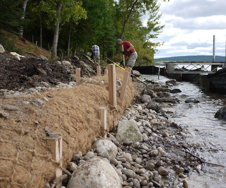Shoreline - coir installation