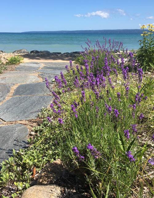 Environmental Shoreline Landscape Services Petoskey